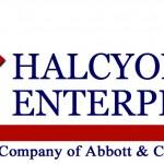 logo-halcyon