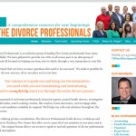 website-the divorce professionals